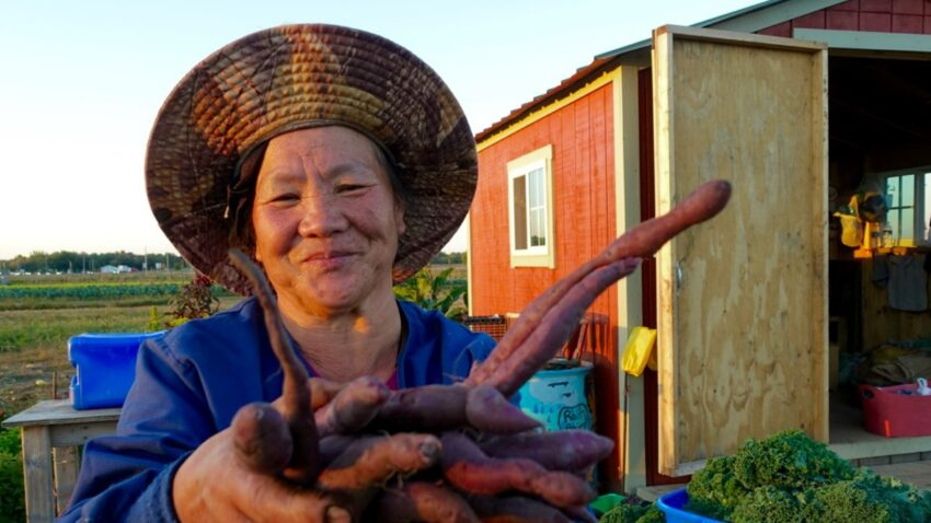 Image for August Positive Change: Hmong American Farmers Association