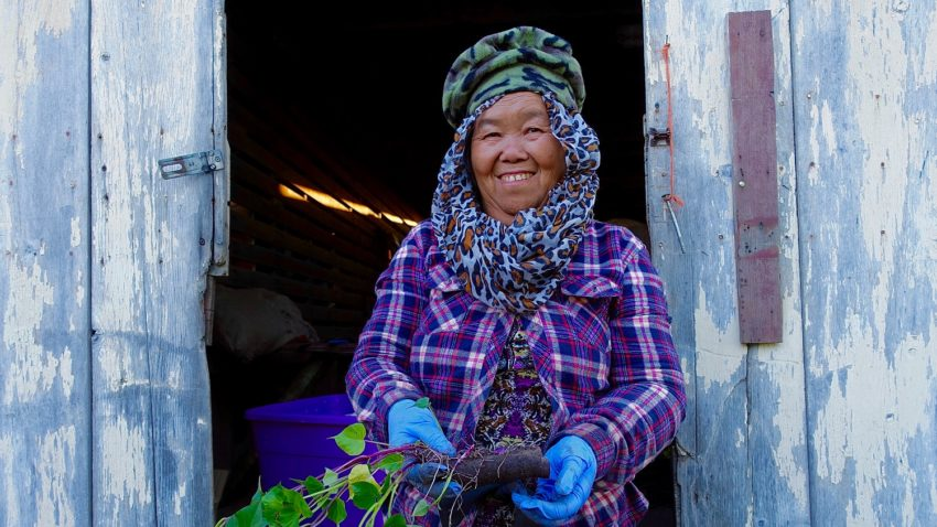 Image for September Positive Change: Hmong American Farmers Association