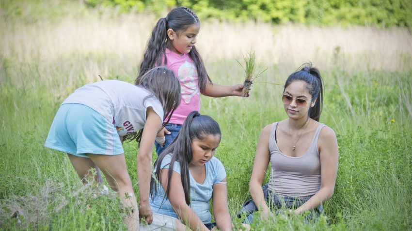 Image for May Positive Change: Lower Phalen Creek Project