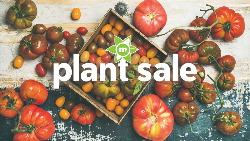 Image for 2019 Spring Plant Sale