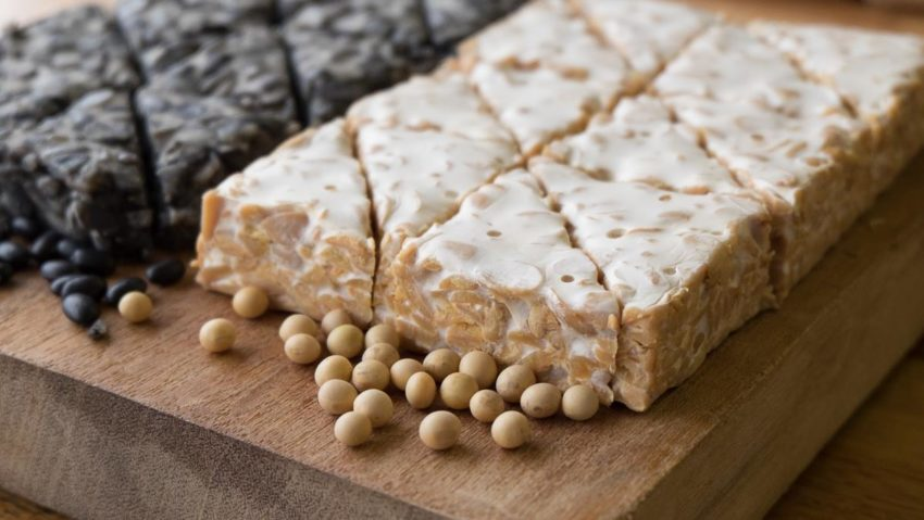 Image for Local Profile: Tempeh Tantrum