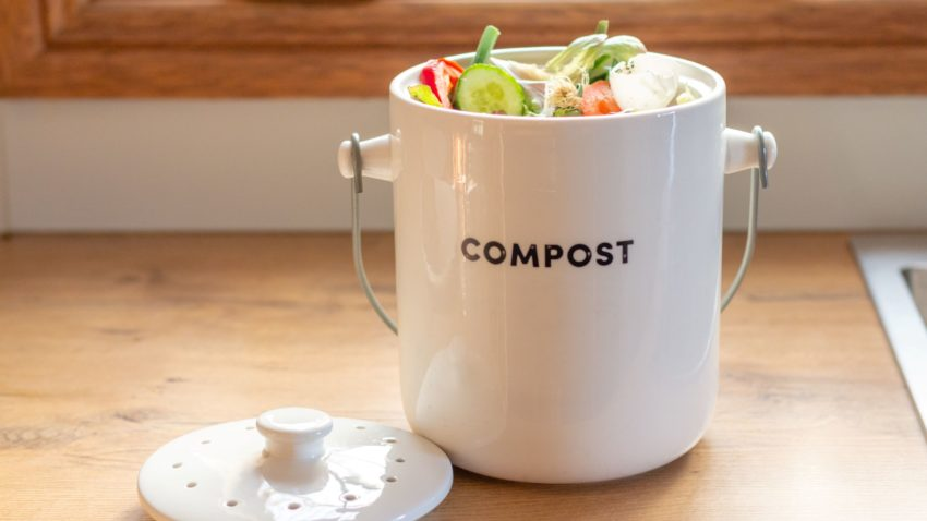 Image for Home Composting 101