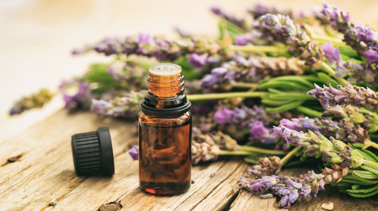 Image for Essential Oils for Stress & Anxiety