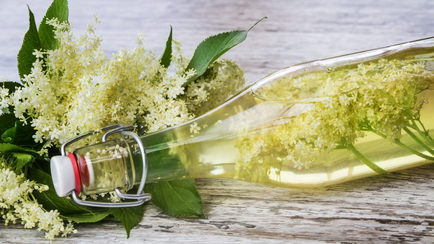 Image for Making Flower Cordials