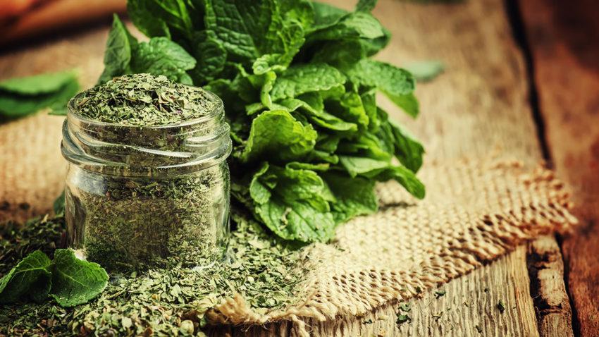 Image for Making Herbal Medicine: Herb Drying and Tea Blending