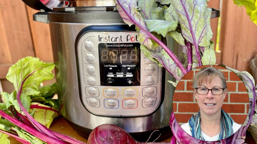 Image for Virtual Class – Local Produce in the Instant Pot