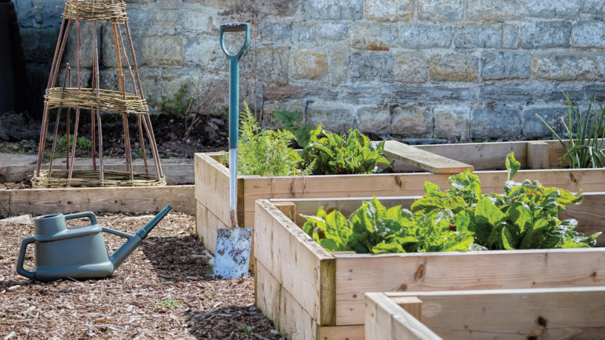 Image for How to: Build & Plant a Raised Bed